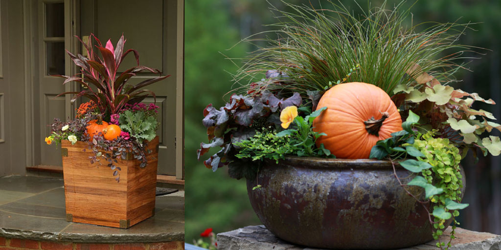 Superior Fall Gardening Ideas Part - 3: Bakers Village Garden Center